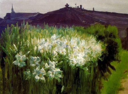 Nature morte e fiori di Jaume Morera