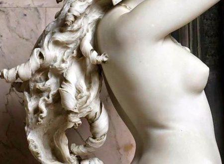 La chioma di Berenice, il prodigio di Ambrogio Borghi